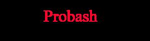 logo news probash24